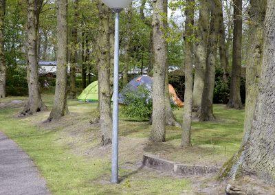 camping-duinhorst-wassenaar-12