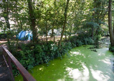 camping-duinhorst-wassenaar-32
