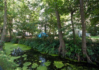 camping-duinhorst-wassenaar-33
