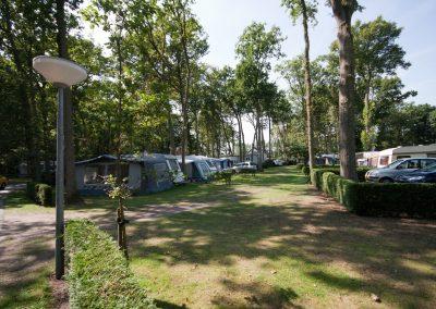 camping-duinhorst-wassenaar-36