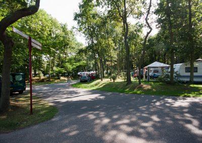 camping-duinhorst-wassenaar-37