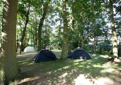 camping-duinhorst-wassenaar-56