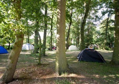 camping-duinhorst-wassenaar-57